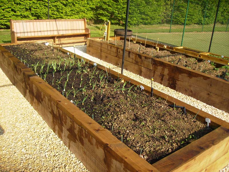 Steel Fruit Cage Raised Vegetable Beds Irrigation And